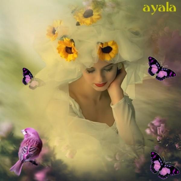 CHEZ AYALA